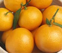 avitamin, vitaminlerin hangi besinlerde olduğu ve resimleri