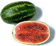 karpuz002, vitaminlerin hangi besinlerde olduğu ve resimleri