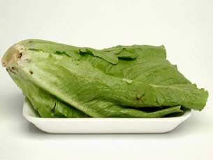 marul1, vitaminlerin hangi besinlerde olduğu ve resimleri
